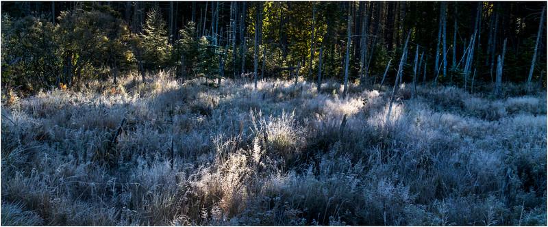 Adirondacks Long Lake Frost 4 September 25 2016