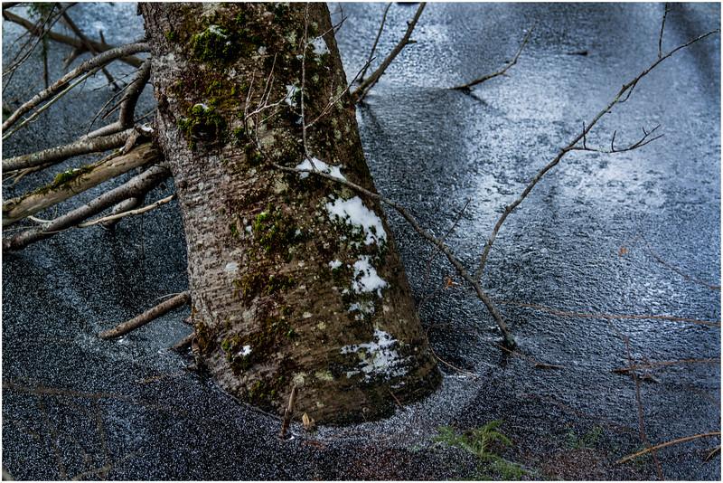 Adirondacks Lake Abenakee 17 December 2016