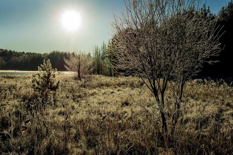 Adirondacks North Creek November 2015 Austin Pond Morning Frost 9