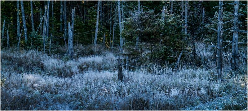 Adirondacks Long Lake Frost 6 September 25 2016