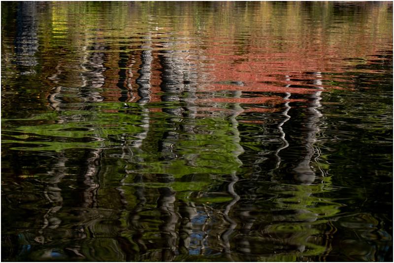 Adirondacks Forked Lake Paddle 25 October 2019
