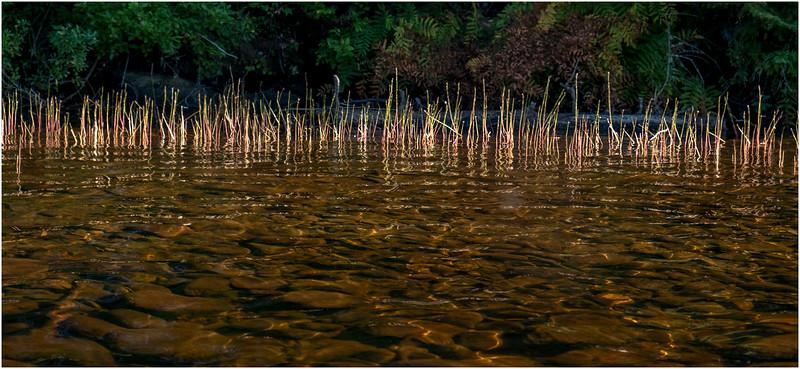 Adirondacks Nicks Lake 4 September 2019