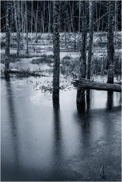 Adirondacks Lake Durant November 2015 Frozen Pond 6 DUO