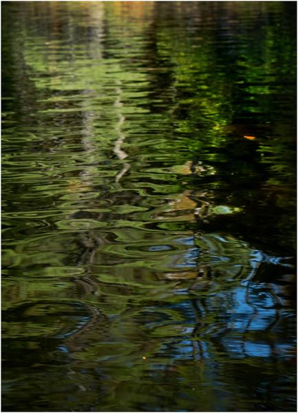 Adirondacks Forked Lake Paddle 26 October 2019
