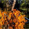 Adirondacks Utowana Lake  Reflection with Dead Arrowhead 1 October 2009