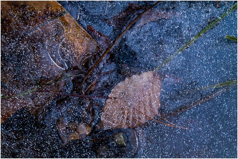 Adirondacks Lake Abenakee Puddle Frozen Surface 3 December 2016