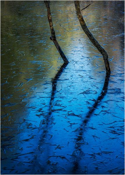 Adirondacks North Creek November 2015 Austin Pond Beaver Pond Ice 1