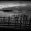 Adirondacks Little Tupper Lake Mist Before Sunrise 6 Horizon September 2013