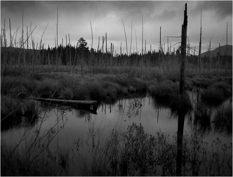 67 Adirondacks Long Lake Shaw Pond 1 May 2005