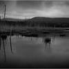 67 Adirondacks Long Lake Shaw Pond 2 May 2005