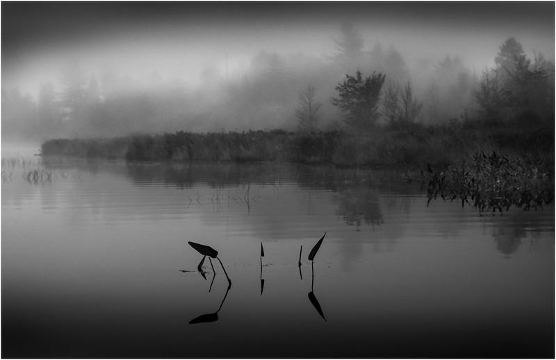 Adirondacks Whitney Wilderness Round Lake Swampy Misty Shore 11 September 2013