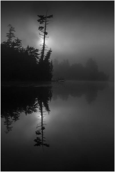 Adirondacks Blue Mountain Lake Sun and Tree July 2013