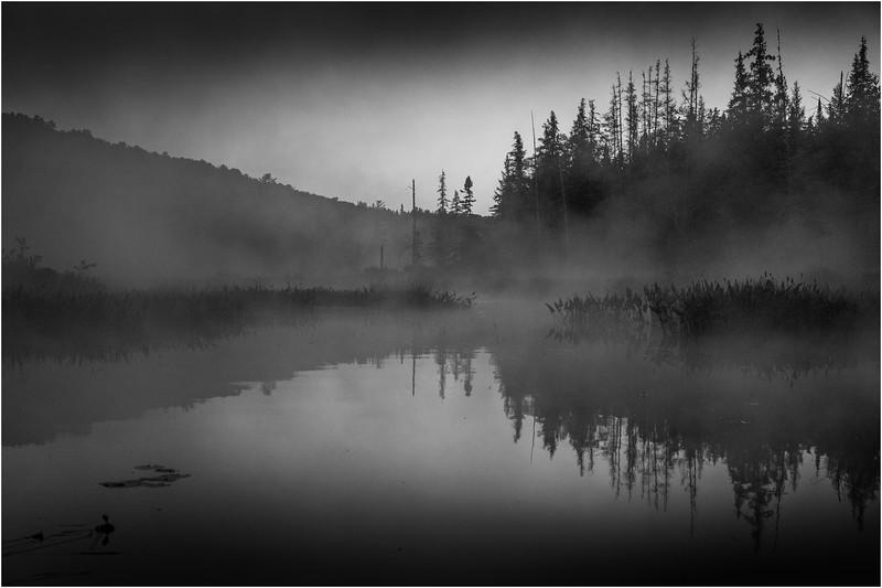 Adirondacks Forked Lake 43 July 2018