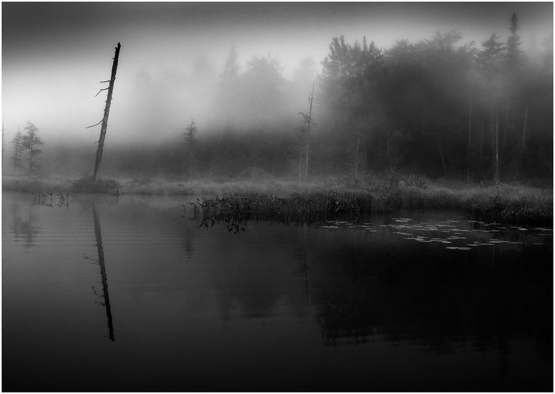 Adirondacks Forked Lake North Bay Inlet Before Sunrise Mist July 2011