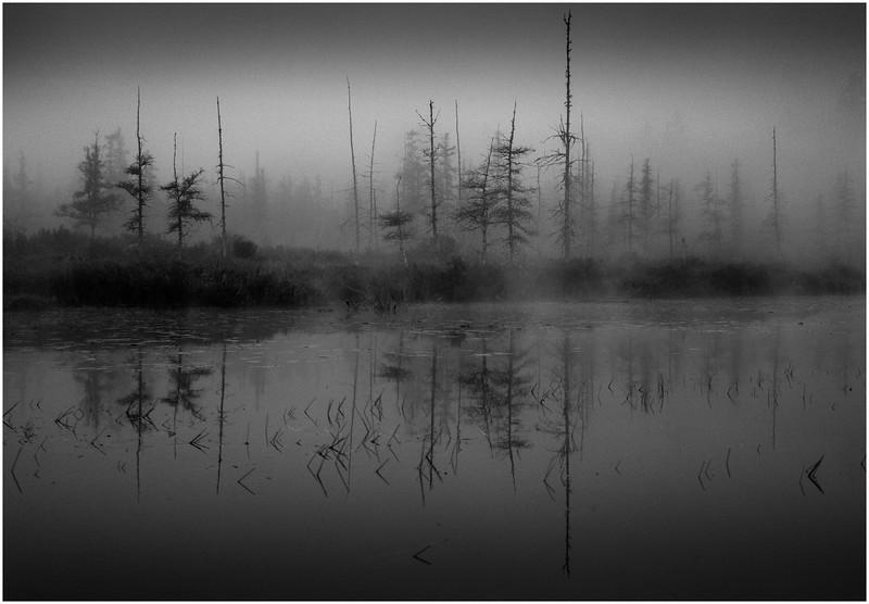 Adirondacks Whitney Wilderness Round Lake Swampy Misty Shore 8 September 2013