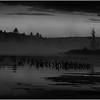 BW Adirondacks Raquette Lake August 2008 Mist Before Sunrise 3