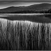 Adirondacks Cedar River Flow Early Light Looking Southeast September 2013