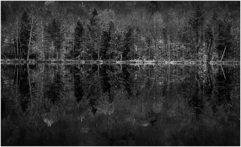 Adirondacks Essex Chain Sixth Lake Shoreline Reflection 2 October 2013
