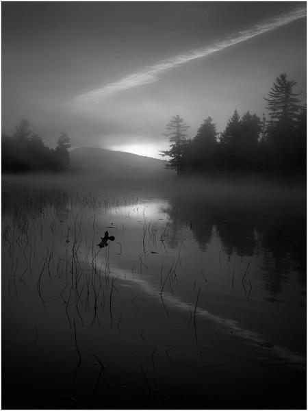 Adirondacks Whitney Wilderness Round Lake Reach Shoreline in Morning Mist 15 October 2011