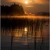 Adirondacks Forked Lake Morning Mist 32 July 2017