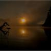 Adirondacks Forked Lake July 2015 Morning Mist Deadfall at Sunrise 2
