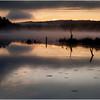 Adirondacks Utowana Lake Before Sunrise with Deadfall October 2009