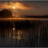 Adirondacks Forked Lake Morning Mist 33 July 2017