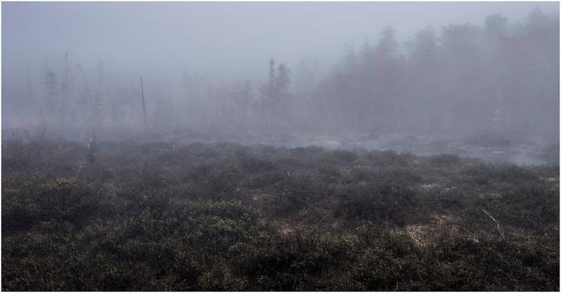 Adirondacks Cary Lake Morning Mist 8 September 2017