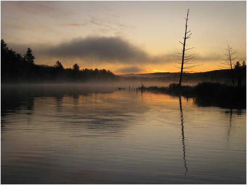Adirondacks Utowana Lake October 2009 Mist Sunrise with Lone Tree2