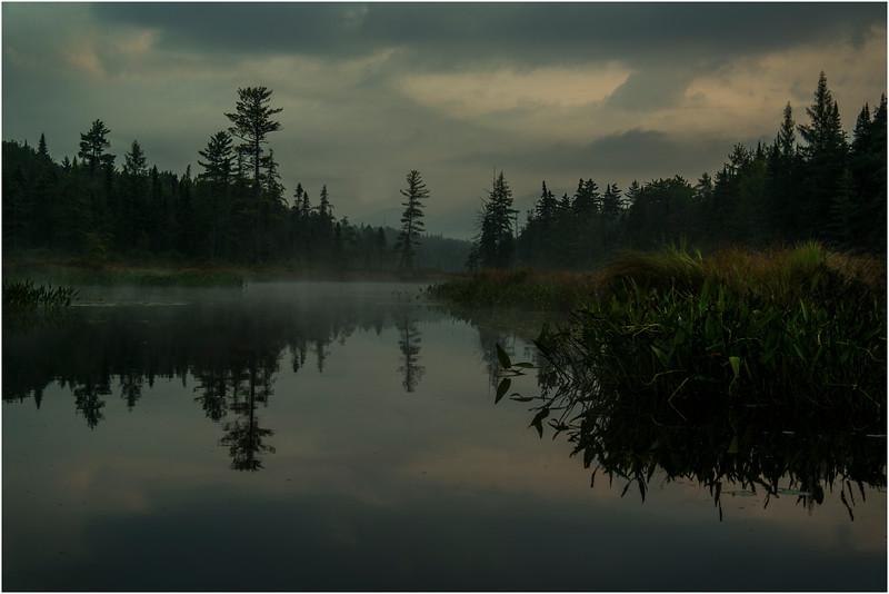 Adirondacks Forked Lake August 2015 North Bay Inlet Before Sunrise 4