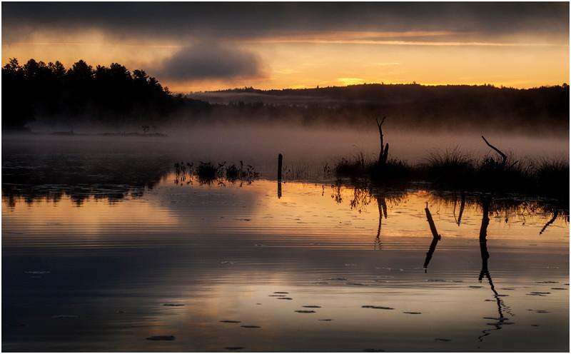 Adirondacks Utowana Lake October 2009 Mist and Deadfall at Sunrise8
