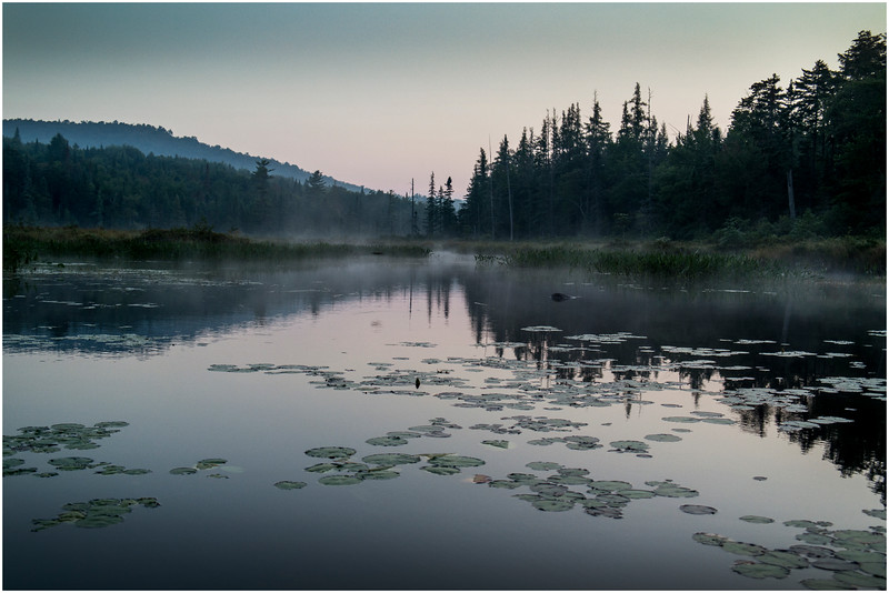 Adirondacks Forked Lake Early Light 3 August 2016