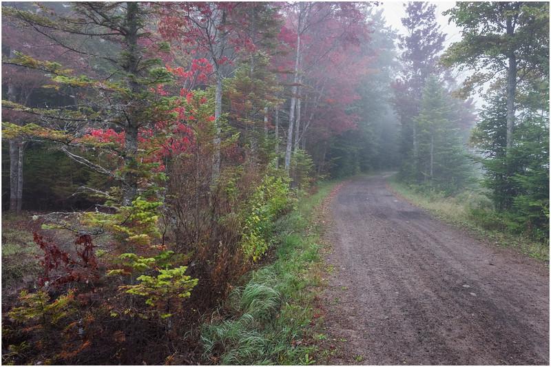 Adirondacks Cary Lake Morning Mist 13 September 2017