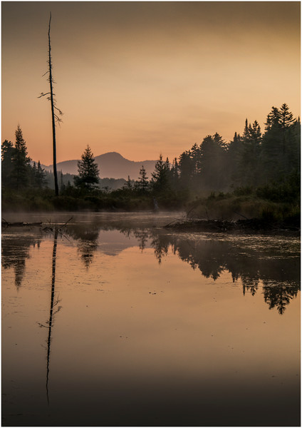 Adirondacks Forked Lake Early Light 9 August 2016