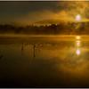 Adirondacks Lake Rondaxe Sunrise 26 July 2016