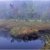 Adirondacks Cary Lake Morning Mist 14 September 2017