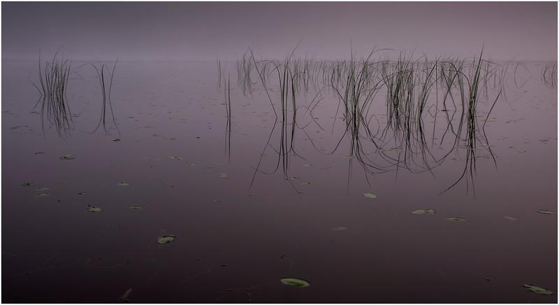 Adirondacks Newcomb Lake Morning Mist 23 July 2017
