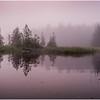 Adirondacks Newcomb Lake Morning Mist 20 July 2017