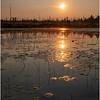 Adirondacks Round Lake Morning 18 August 2019