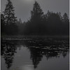 Adirondacks Newcomb Lake Morning Mist 33 July 2017