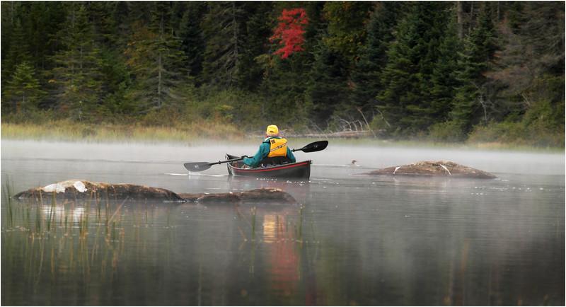 Adirondacks Cedar River Flow September 2015 Rick Rosen Bay 1