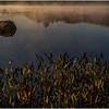 Adirondacks Lake Durant Morning Light 12 September 25 2016