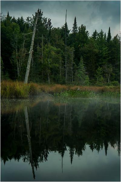 Adirondacks Forked Lake August 2015 North Bay Inlet Before Sunrise 2