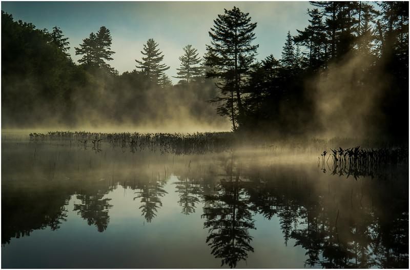 Adirondacks Moose River 2 July 2016