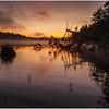 Adirondacks Utowana Lake October 2009 Mist and Deadfall at Sunrise7