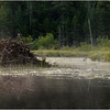 Adirondacks Little Tupper Lake July 2015 Beaver Lodge 1