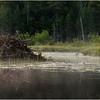 Adirondacks Little Tupper Lake July 2015 Beaver Lodge 1