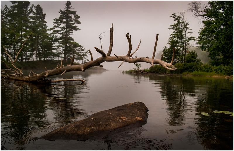 Adirondacks Chateaugay Lake Duck Island Bay 2 July 2016