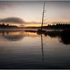 Adirondacks Utowana Lake October 2009 Mist Before Sunrise Tree