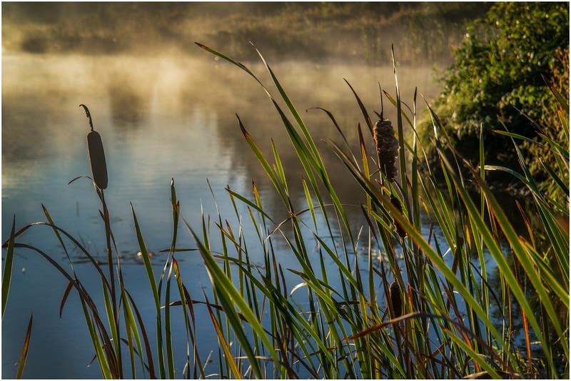 Adirondacks Lake Durant Morning Light 19 September 25 2016